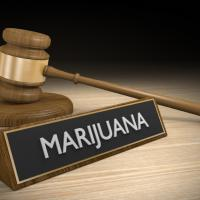 City of Oregon City Marijuana Regulation